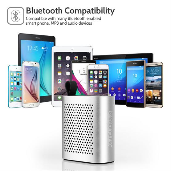 Bluetooth Speaker Silver